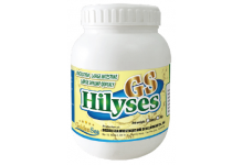 GS-Hilyses
